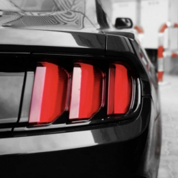 Ford Mustang UAE Club