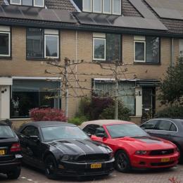 Mustang Club Benelux